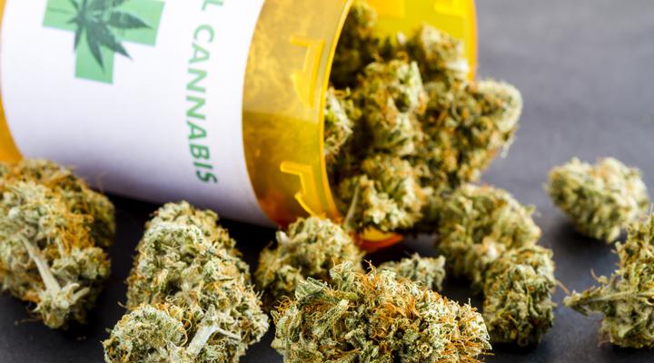медицинская марихуана в Польше