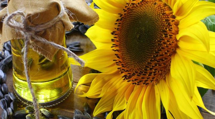 ціни на соняшникову олію вище, ніж в ЄС