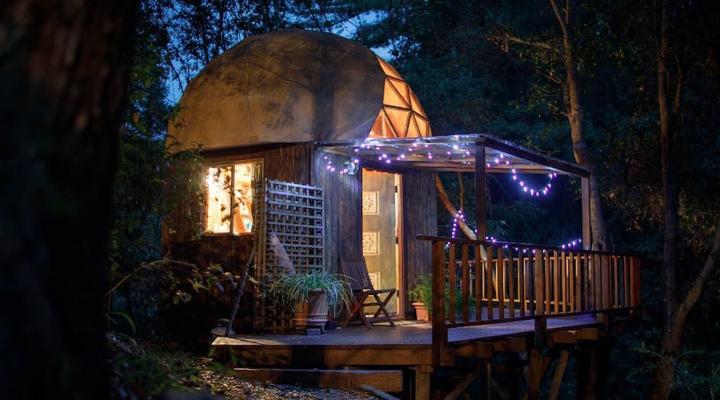 дом-гриб, расположенный в лесу недалеко от Сан-Франциско