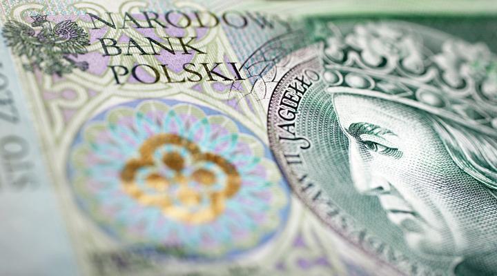 перехід на євро не вигідний для Польщі