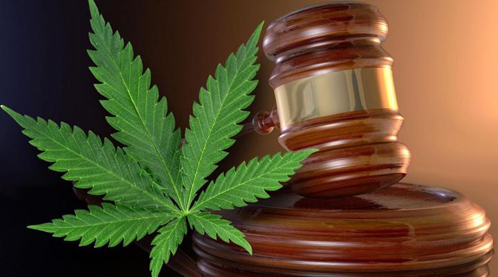 вживання марихуани може стати причиною у відмові від американського громадянства