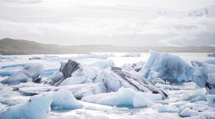 екологія в Арктичному регіоні