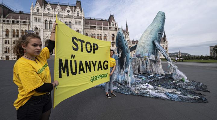 киты перед зданием парламента в Будапеште