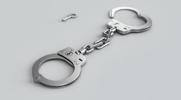 нелегалов задержали на границе