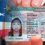 На администрацию Трампа подали в суд из-за ограничений по Green Card