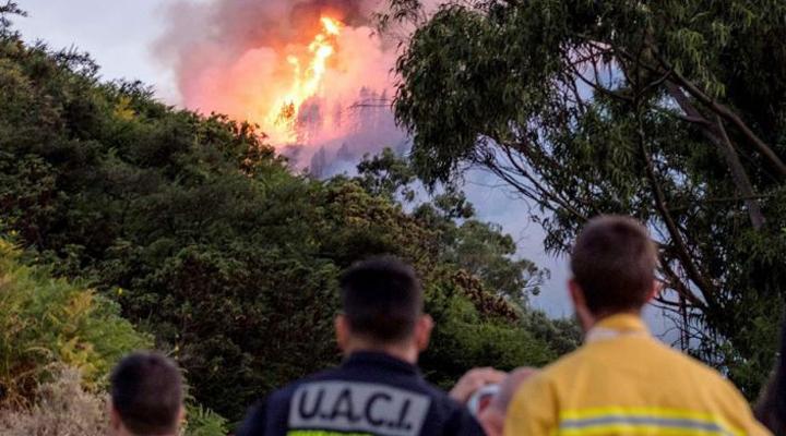 пожар на Гран-Канарии нанес большой ущерб