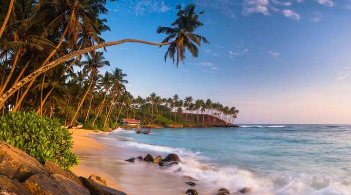 подорож до Шрі-Ланки