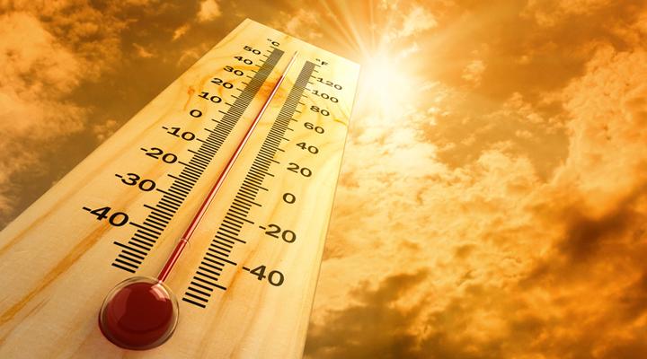 спека в Нідерландах