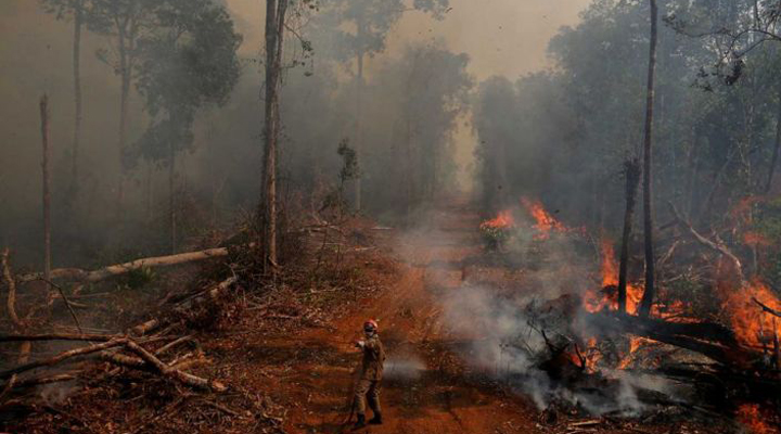 проблема амазонских пожаров