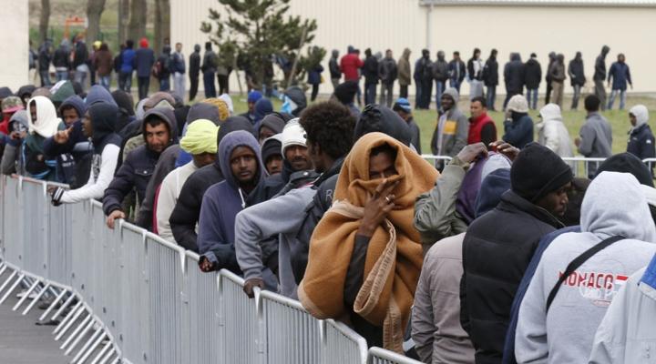 розподіл біженців між 4 країнами Європи