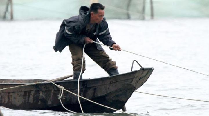 незаконний промисел в російських водах