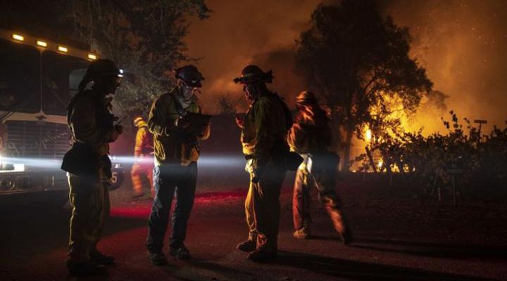 в округе Сонома пожар уничтожил более 12000 га культур