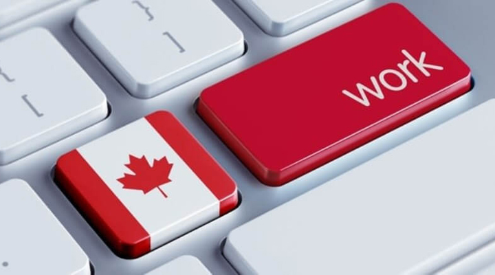 на ринку праці Канади не вистачає фахівців