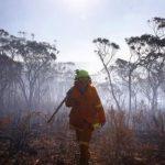 Смертельні лісові пожежі. Кількість жертв збільшилася