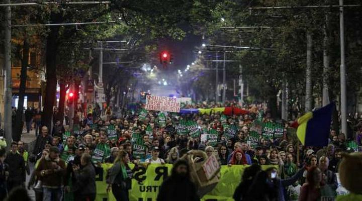 протесты против вырубки лесов в Румынии