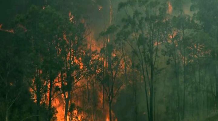 сильные пожары в Австралии привели к большим разрушениям