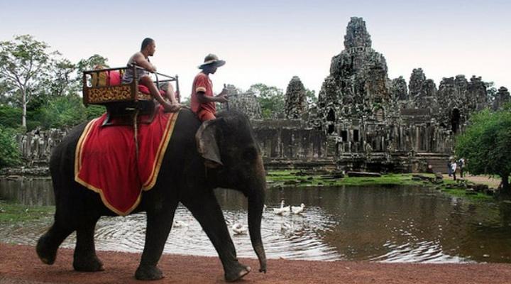 в Камбоджі заборонять кататися на слонах