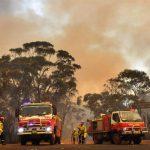 В Австралії найближчими днями очікується майже 50 градусів Цельсія