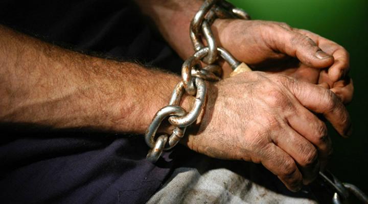 украинцы чаще других становятся жертвами торговли людьми