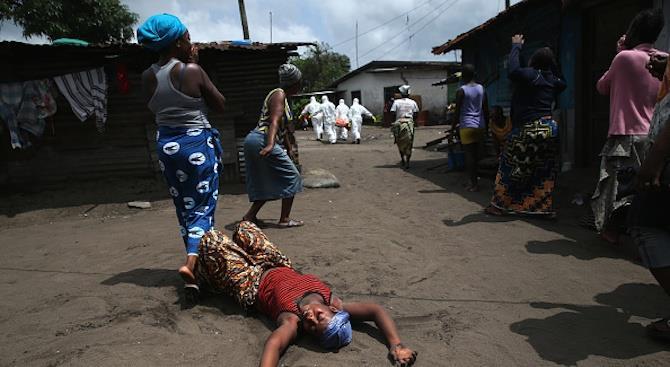 Эпидемия лихорадки Ласса в Нигерии забрала жизни 41 человека