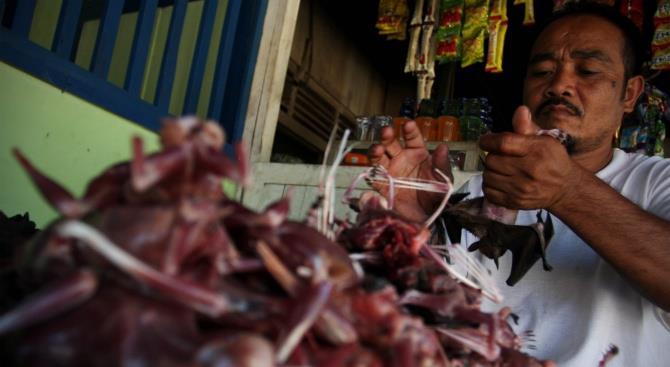 Несмотря на коронавирус рынки в Индонезии продолжают продавать мясо летучей мыши
