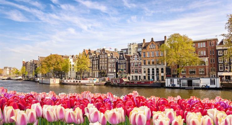 Амстердам может запретить продажу марихуаны иностранцам