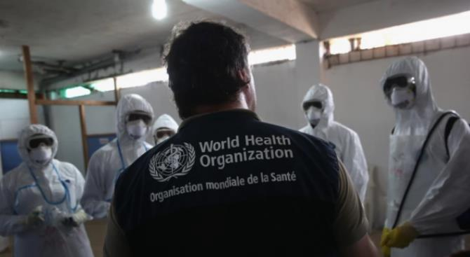 511 зарегистрированных случаев смерти от коронавируса в Европе