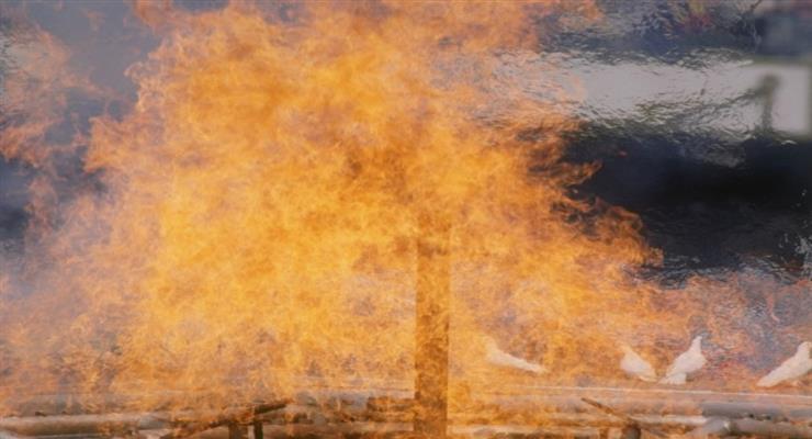 Эстафета олимпийского огня в Греции остановлена из-за коронавируса