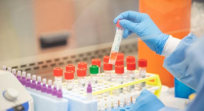 Новая Зеландия сообщила о новых 47 подтвержденных случаях коронавирусной инфекции