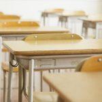 Почти полтора миллиарда школьников и студентов учатся дистанционно