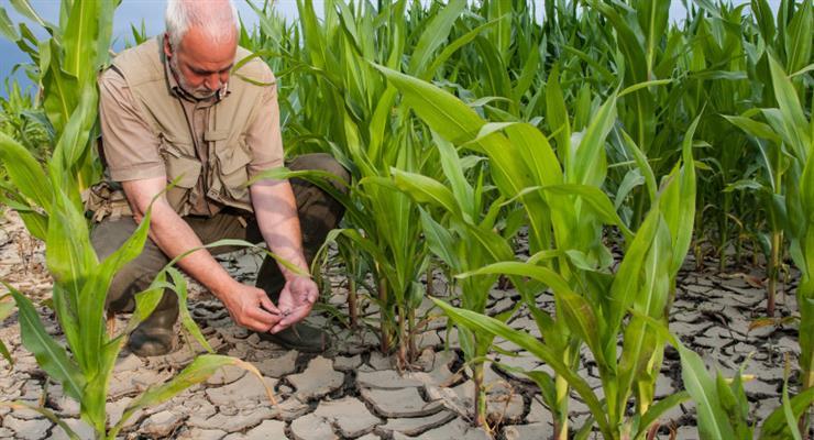 небывалая засуха в Чехии