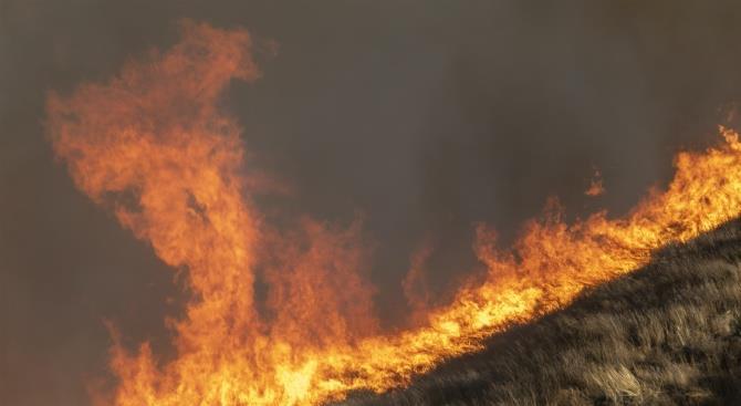 спалахи пожежі в Чорнобильській зоні