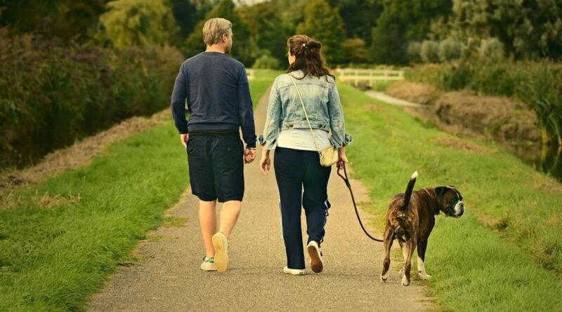 прогулянки і заняття спортом підвищує імунітет
