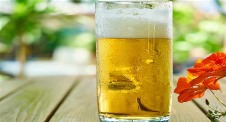 чехи пытаются продавать пиво через интернет