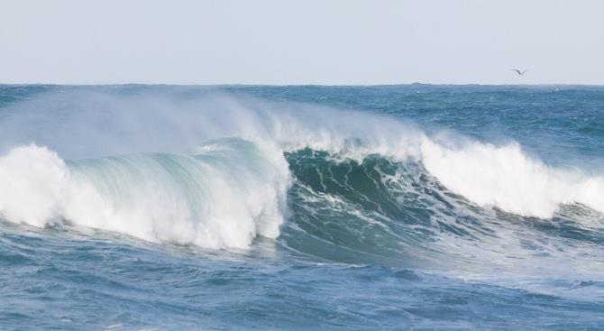 пятеро серферов утонули в штормовом море