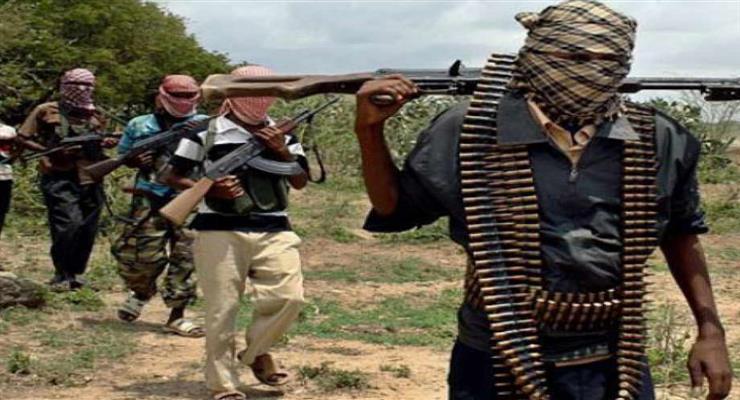 нігерійські збройні сили звільнили 72 заручника