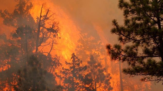 чотири людини загинули і дев'ять були госпіталізовані в результаті пожежі