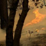 Пожежа на Пелопоннесі ще не загашена