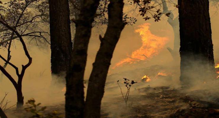 пожежа на Пелопоннесі триває