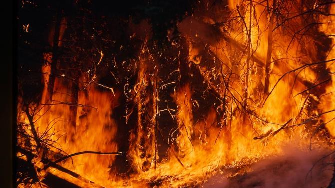 сильна пожежа в Туреччині
