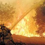 Большой лесной пожар закрыл Дарданеллы
