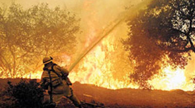 сильна лісова пожежа в Туреччині