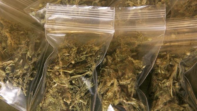 найбільша кількість вилученої марихуани