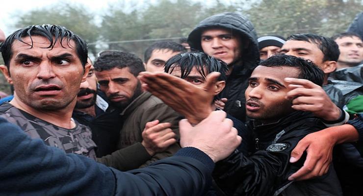 звільнення 38 біженців