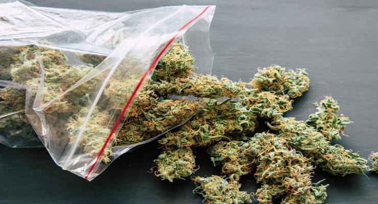 вилучено велику партію наркотиків