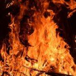 9 людей стали жертвами лісових пожеж в Україні