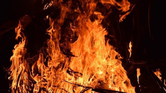 великі лісові пожежі в Луганській області