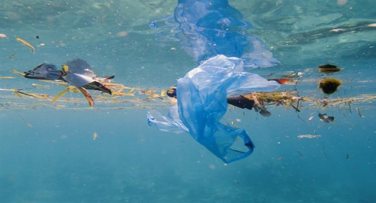 штрафи або в'язниця за забруднення навколишнього середовища