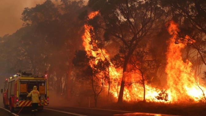пожежі через рекордну спеку