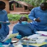 Гвінея оголосила про епідемію еболи